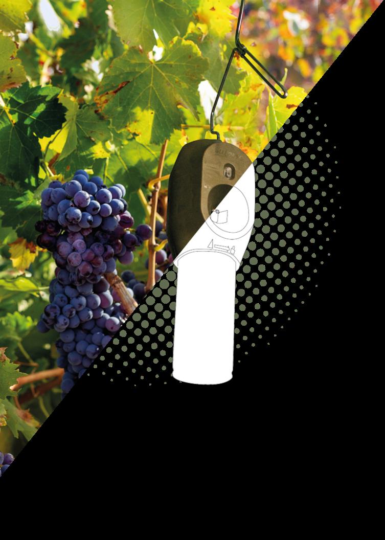 puffer vines dots