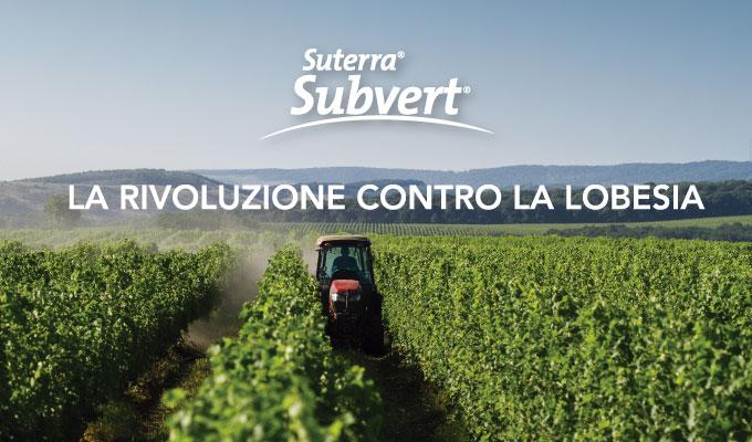 subvert-IT